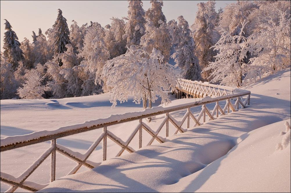 """фото """"Зима в парке..."""" метки: пейзаж,"""