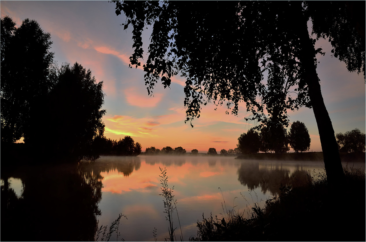 """фото """"***"""" метки: пейзаж, вода, деревья, лето, небо, облака, отражения, пруд, травы, утро"""