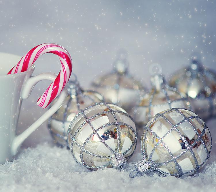 "photo ""***"" tags: still life, winter"