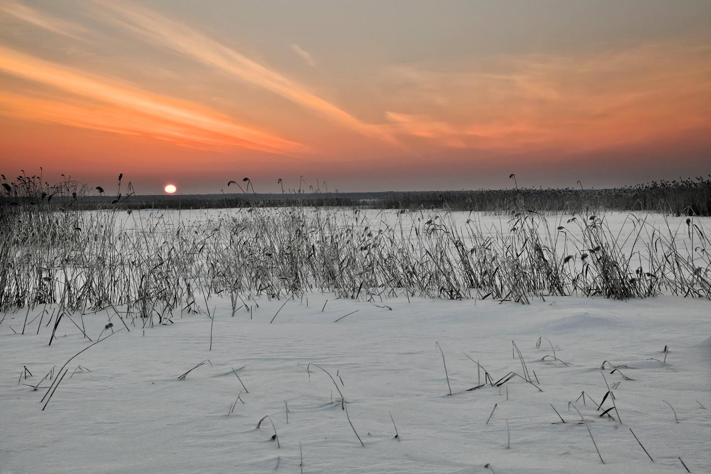 """фото """"Утро"""" метки: , мороз, утро, экстрим"""