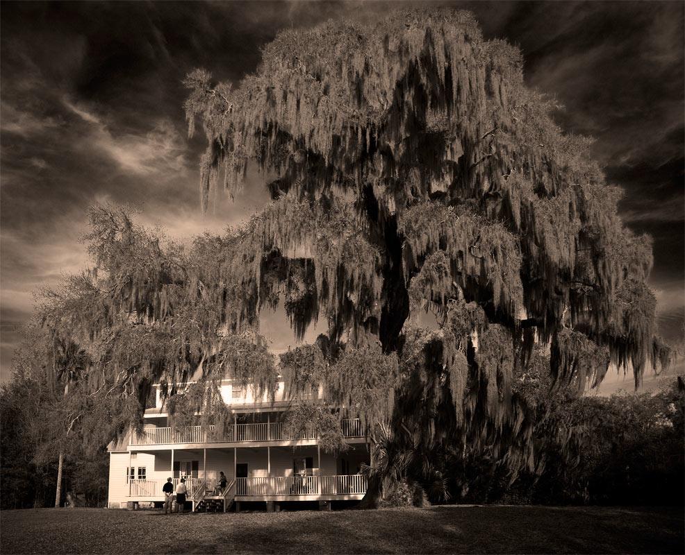 "фото ""Дoм на старой плантации"" метки: архитектура, путешествия,"