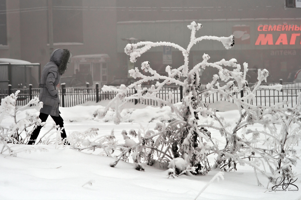 "фото ""Холода"" метки: разное, зима, люди, мороз"