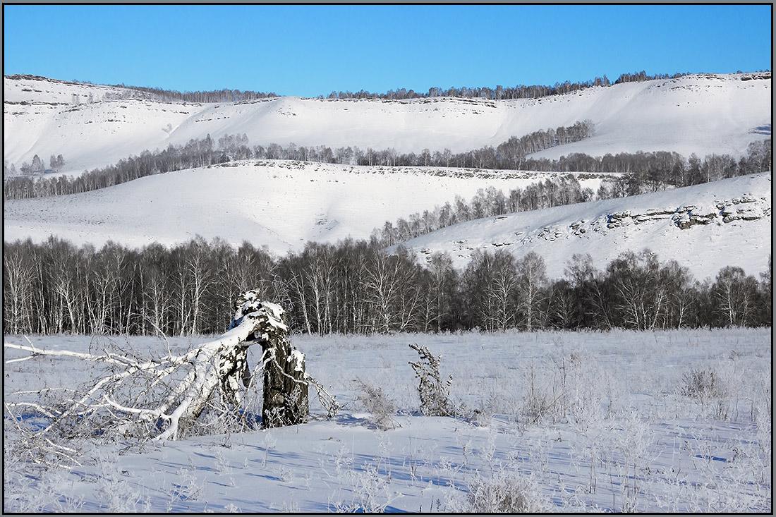 """фото """"Изломы"""" метки: пейзаж, природа, Красноярский край, горы, лес"""