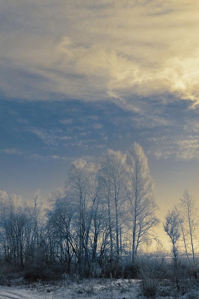"""фото """"Троебортное ..."""" метки: пейзаж, зима"""