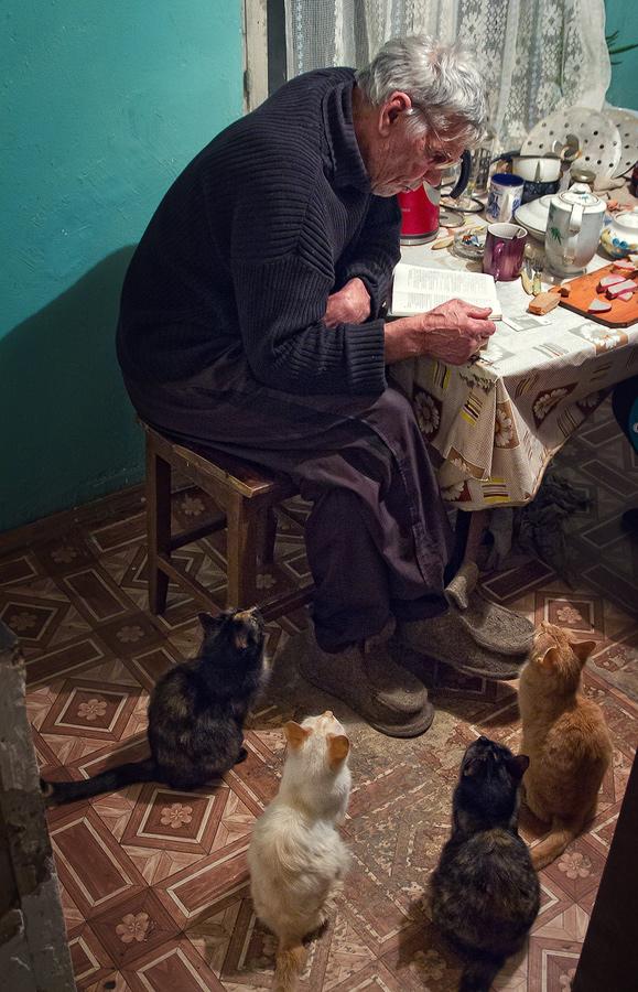 """фото """"Сказка на ночь"""" метки: жанр,"""