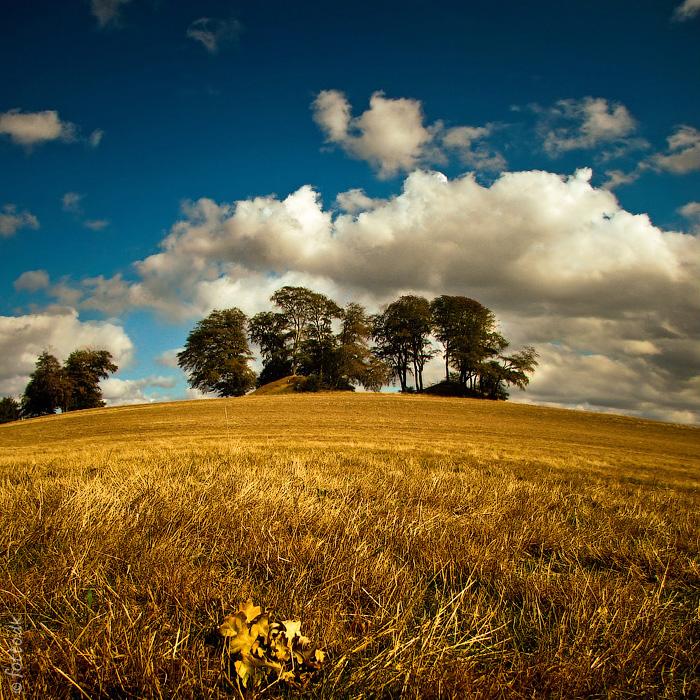 """фото """"В осенних полях"""" метки: пейзаж, дания, осень, поле"""