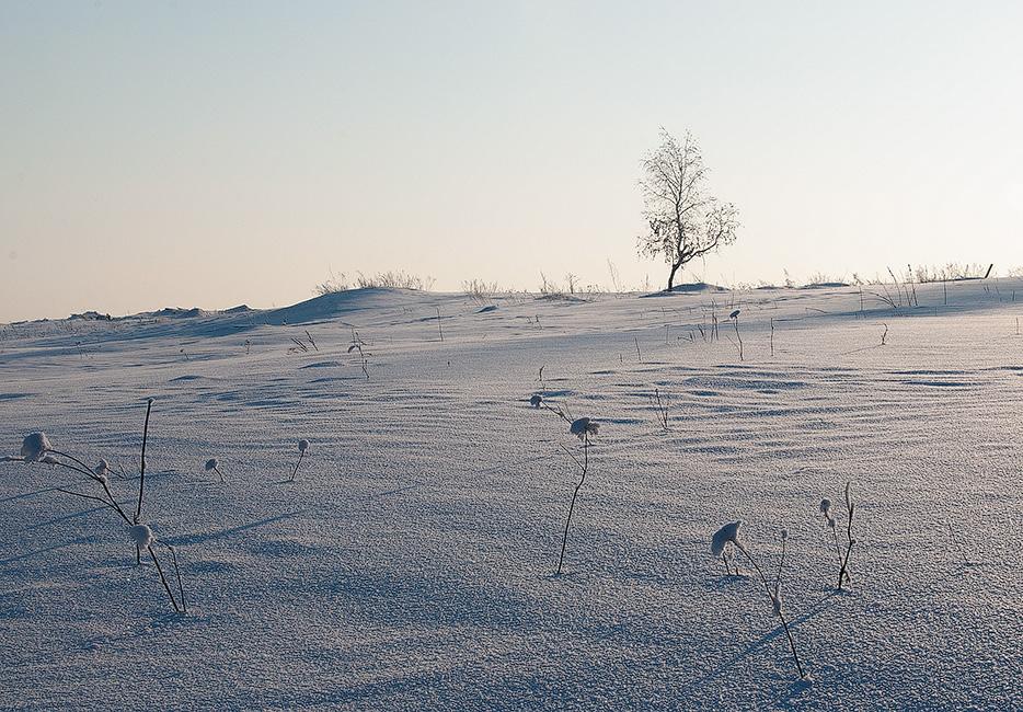 "фото ""Одиночество"" метки: пейзаж,"