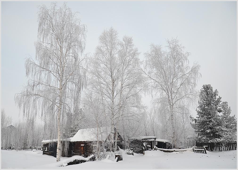 """фото """"***"""" метки: пейзаж, природа, деревня, снег"""
