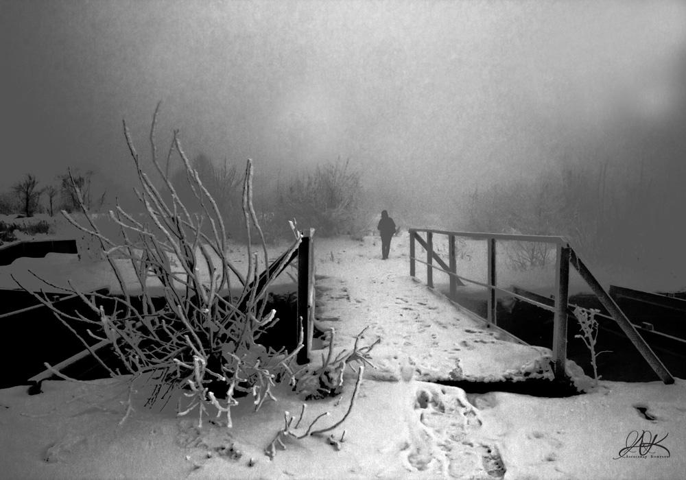 "фото ""Уходящая в туман"" метки: природа,"