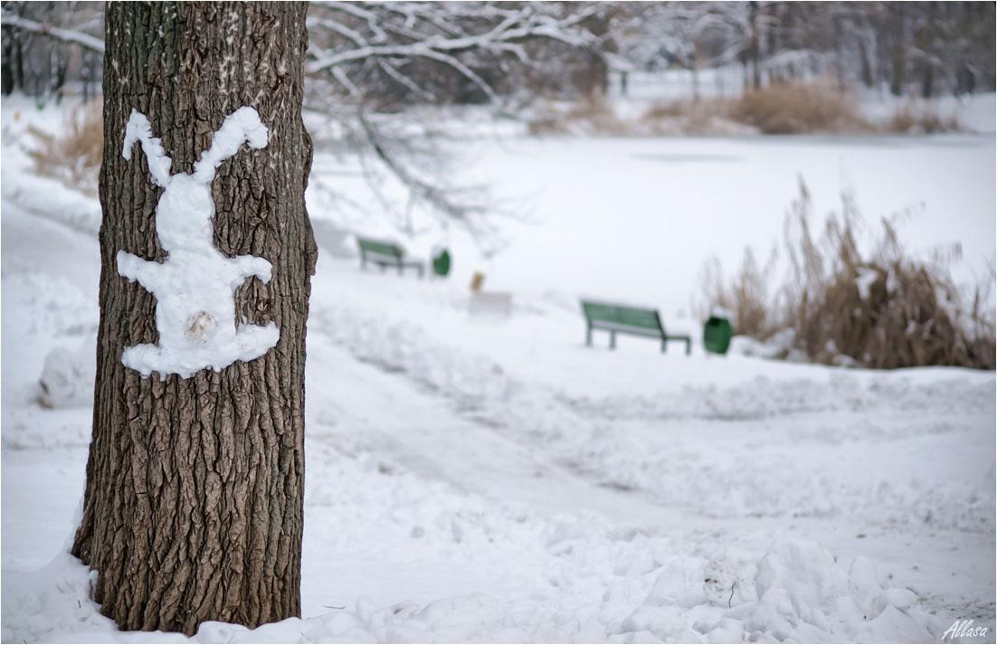"фото ""Бежал и промахнулся!)))"" метки: юмор, природа,"