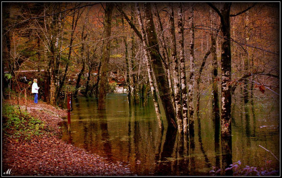 "фото ""On the path of life..."" метки: пейзаж, природа,"
