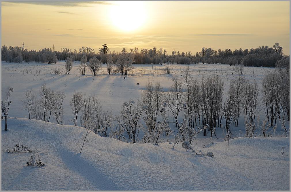 """фото """"На закате"""" метки: пейзаж, природа, лес, снег"""