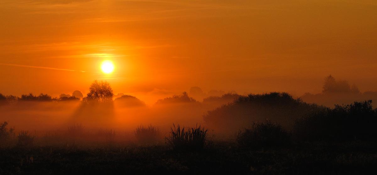 """фото """"Новый день"""" метки: природа,"""