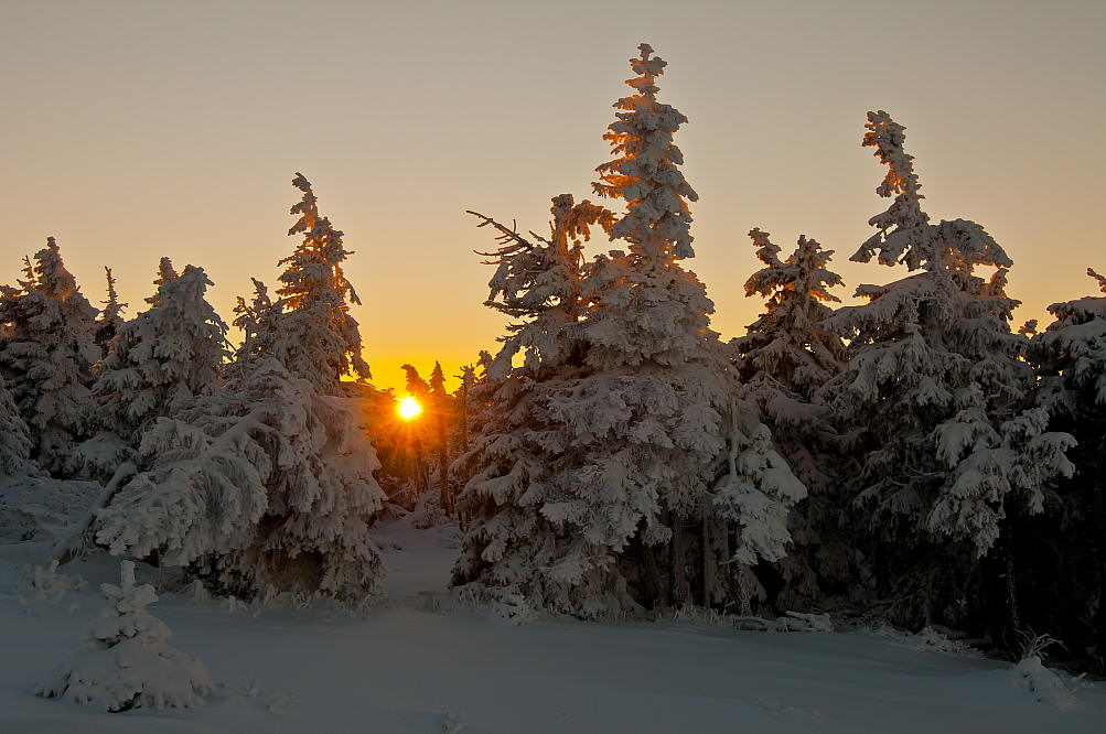 "photo ""Winter Sun"" tags: landscape, sun, winter"