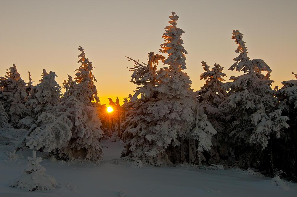 """фото """"Winter Sun"""" метки: пейзаж, sun, зима"""