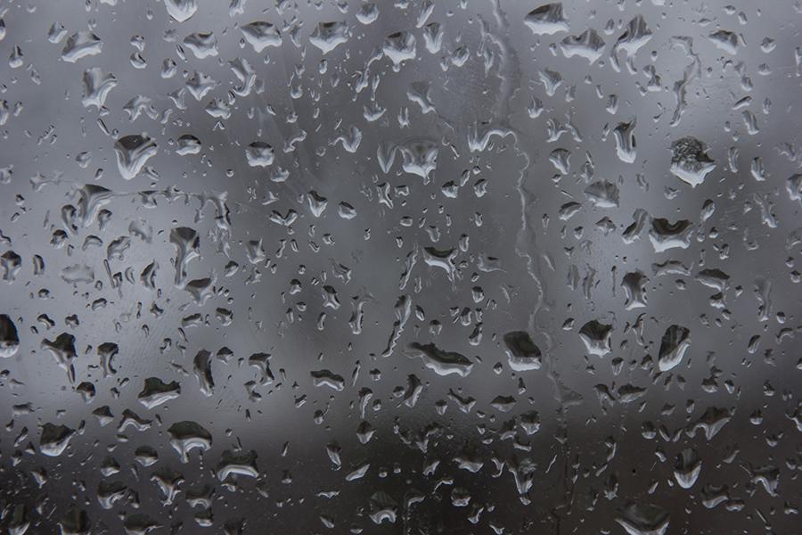 """фото """"Следы дождя"""" метки: макро и крупный план,"""