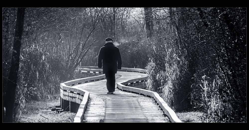 "photo ""Winter walk"" tags: black&white,"