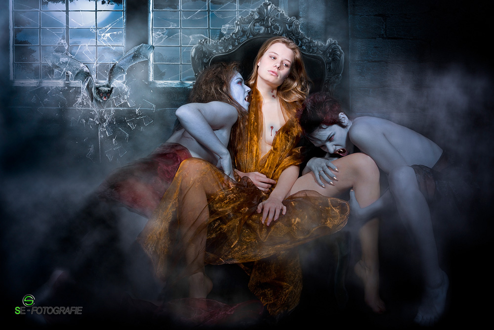 "фото ""lady night"" метки: фотомонтаж, ню, портрет, lady night, se-fotografie, stanislav pokhodilo"