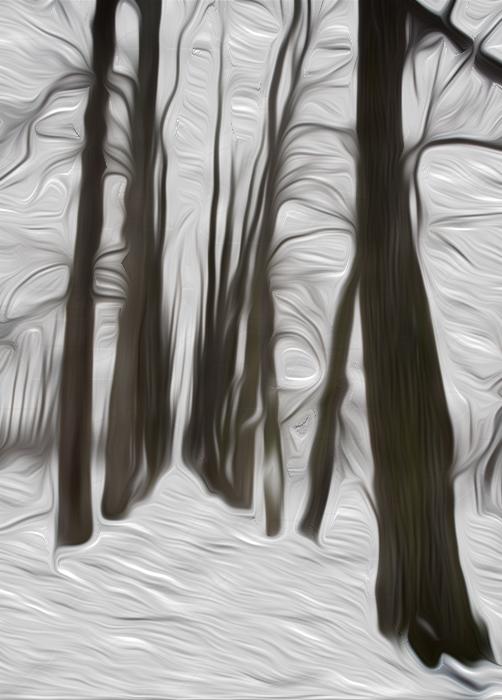 "фото ""Наваждение."" метки: пейзаж, зима"