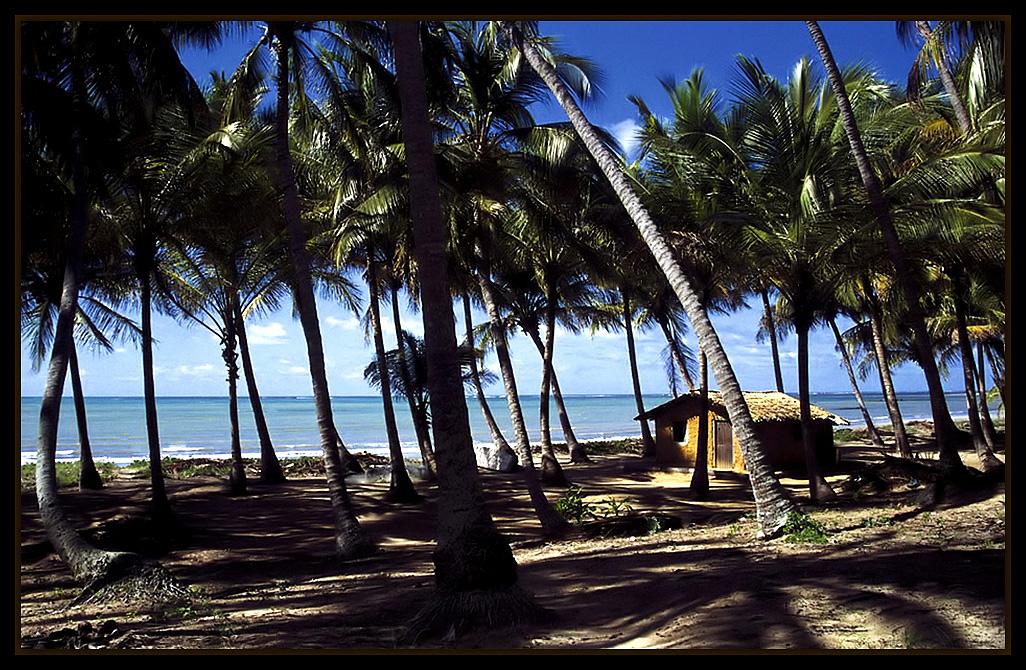 "фото ""Japaratinga Beach"" метки: пейзаж, путешествия,"