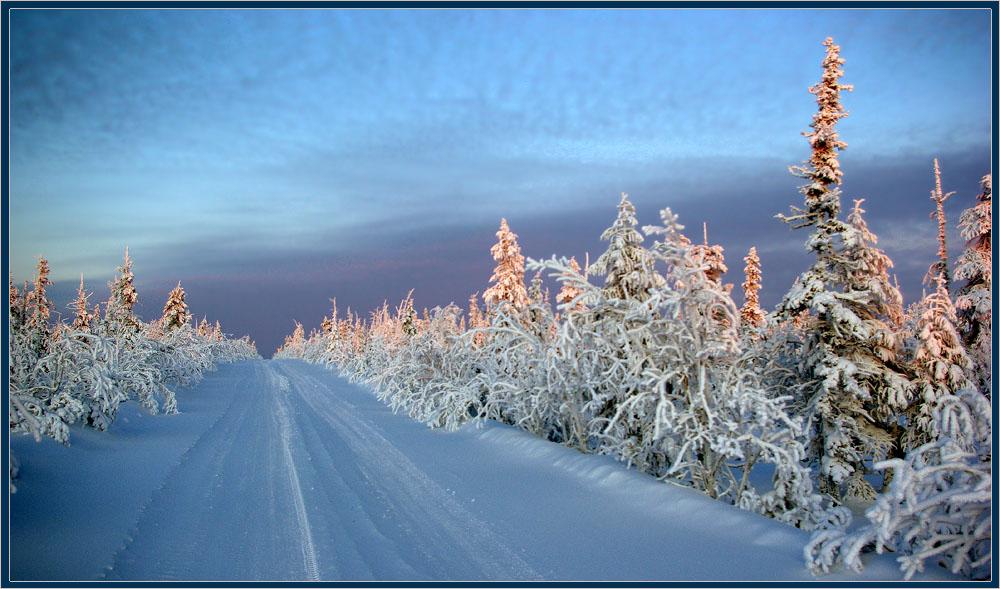 """фото """"Дорога на север"""" метки: пейзаж, дорога, зима, мороз, север, тайга"""