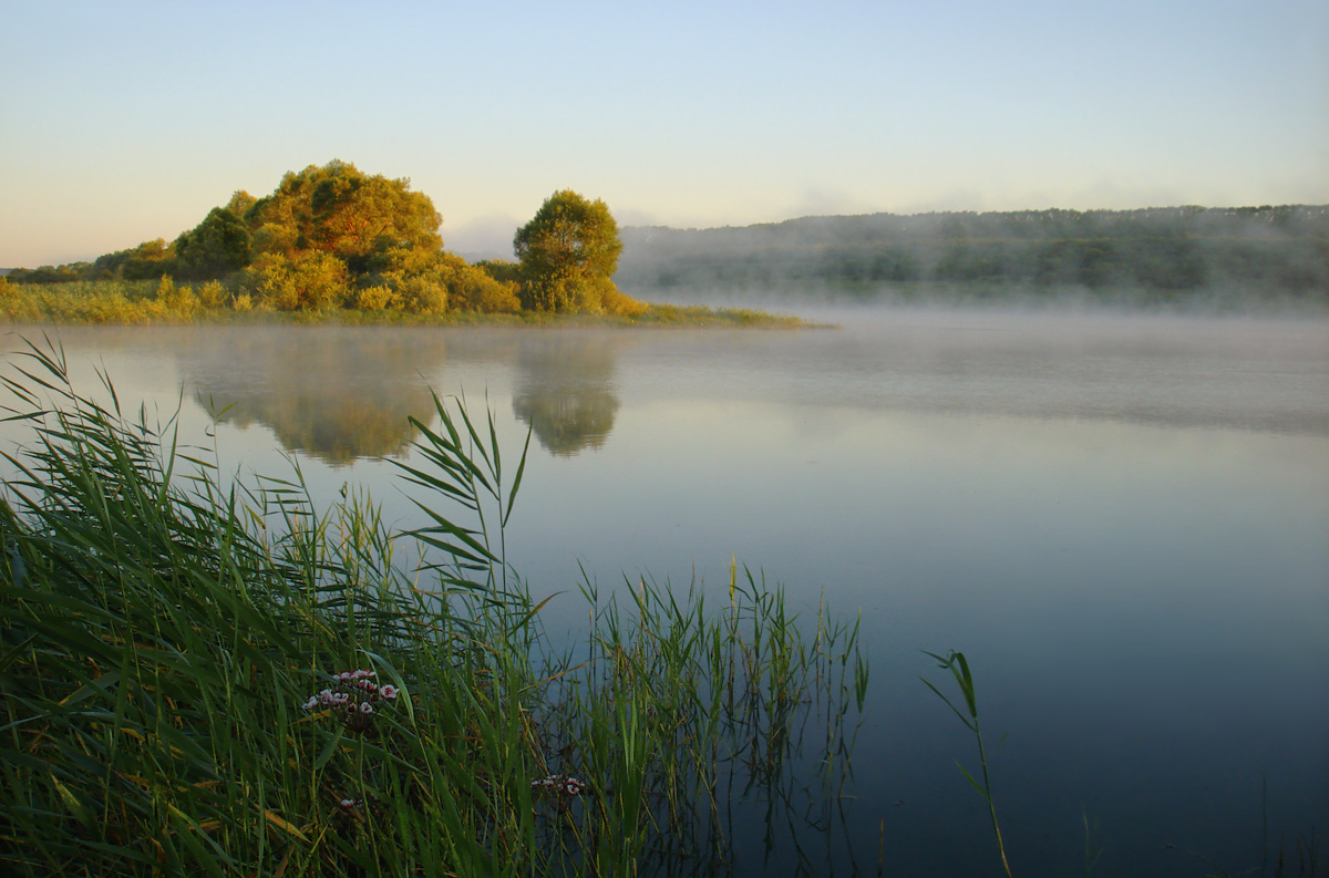 "photo ""Ah, summer..."" tags: landscape, fog, summer, water"