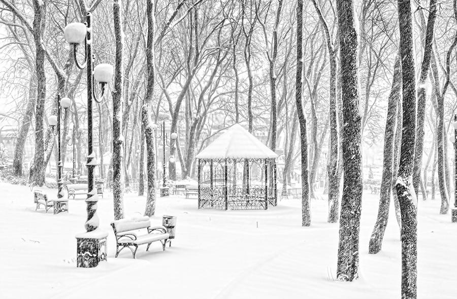 "photo ""Snowfall"" tags: landscape, black&white, city,"
