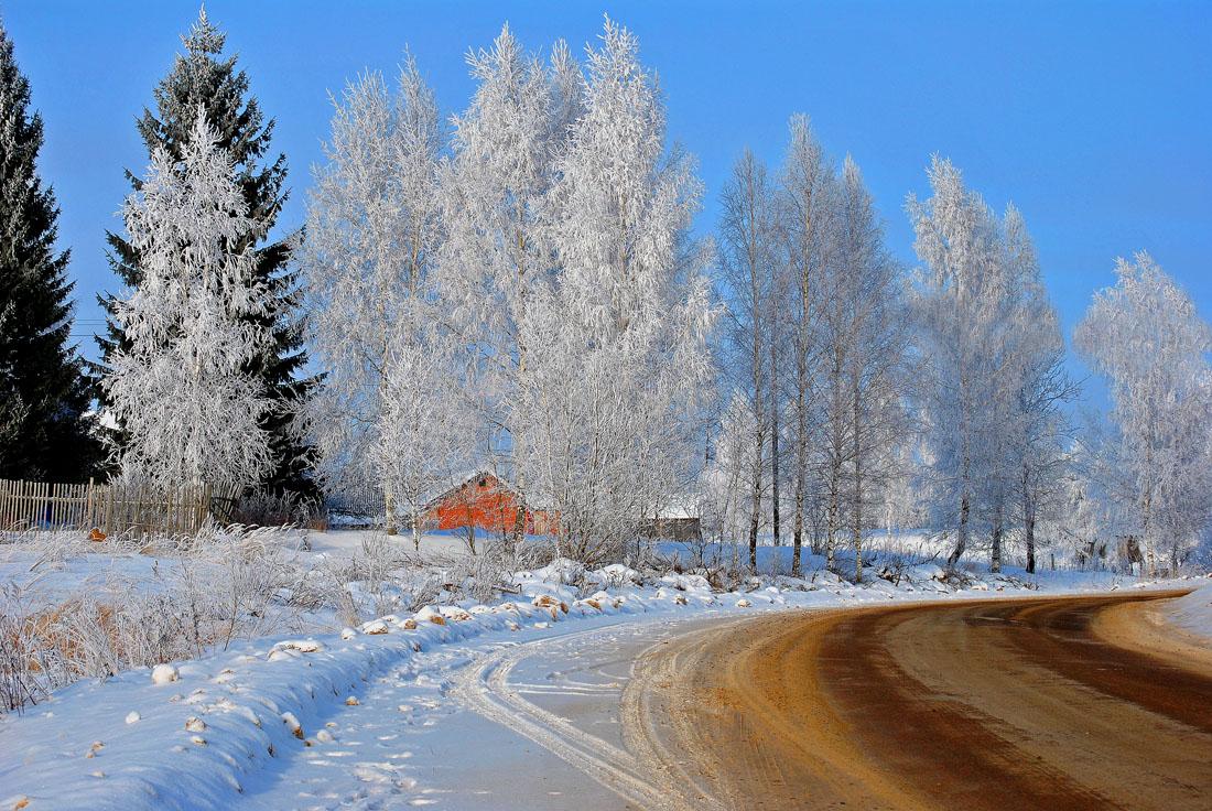 """фото """"Морозный январский полдень."""" метки: пейзаж, природа,"""