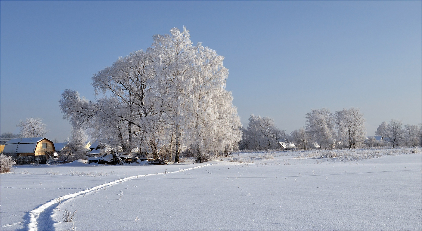"photo ""***"" tags: landscape, birches, hoarfrost, snow, winter, деревня, дома"