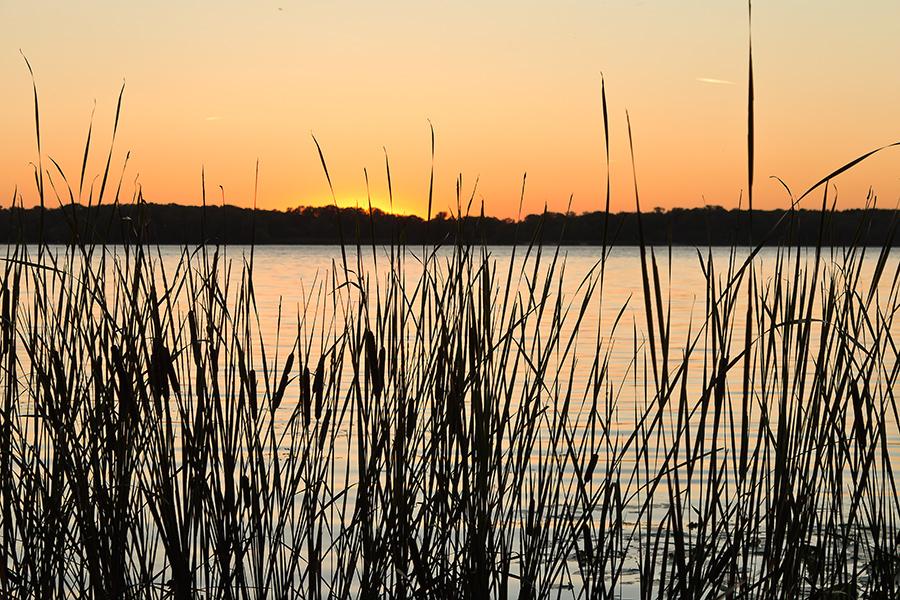 "photo ""***"" tags: landscape, Dnieper, Ukraine, evening, september, sky, sun, sunset, water, Запорожье, камыши, плавни"