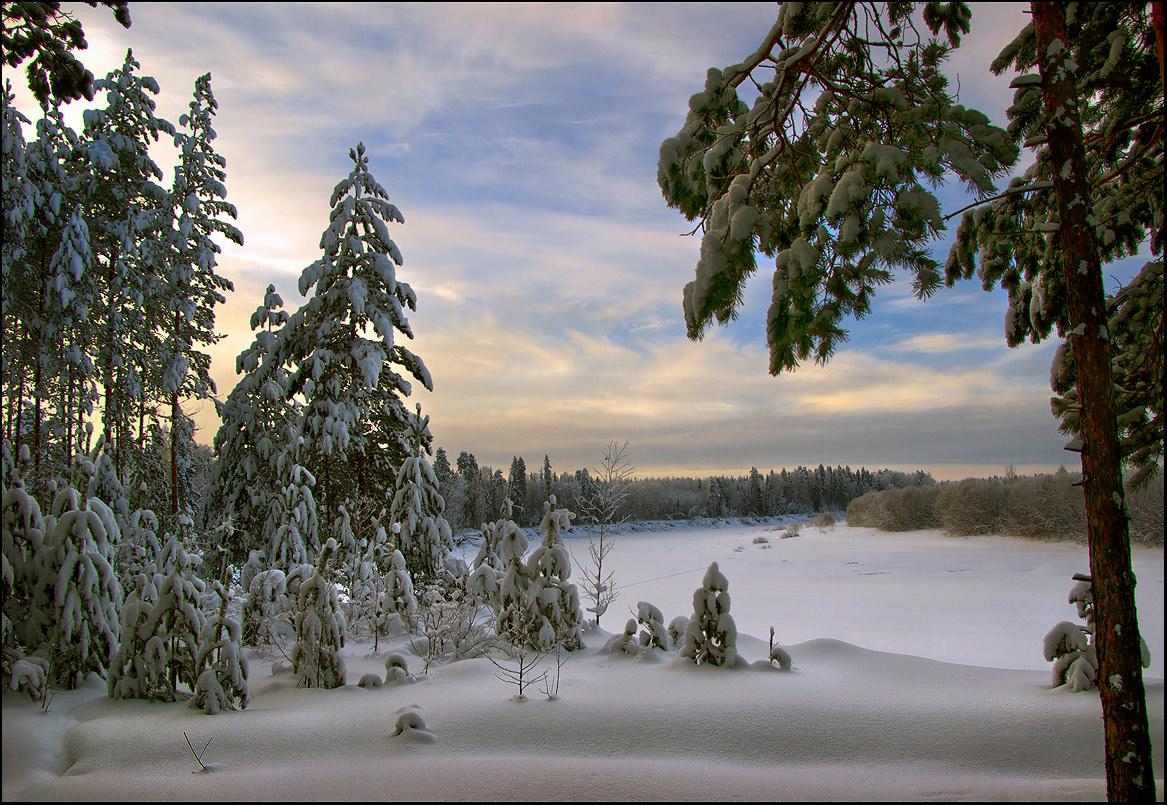 """фото """"Зимний вечер в лесу, на берегу реки"""" метки: пейзаж, зима, лес"""