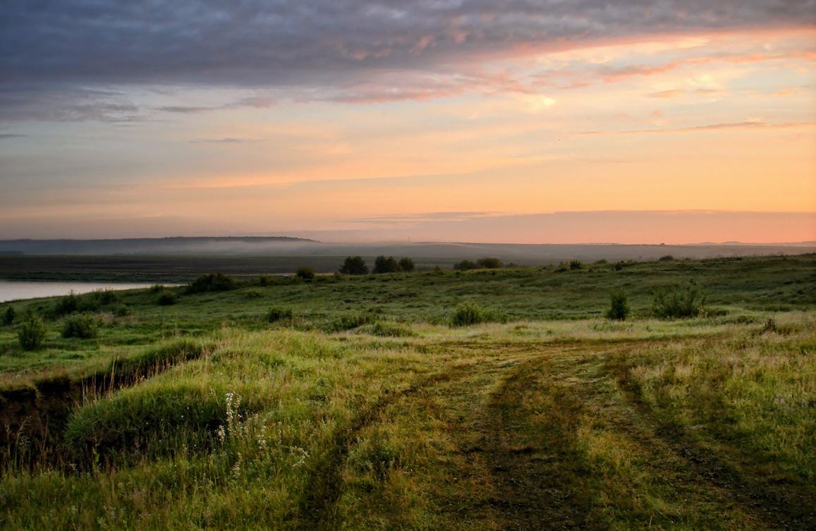"""фото """"..в страну туманов розовых я ухожу опять.."""" метки: пейзаж, лето, озеро, туман, утро"""