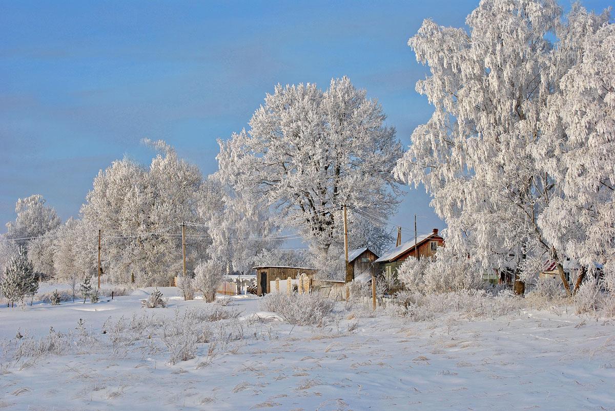 Открытки с добрым утром зимней тематики первую