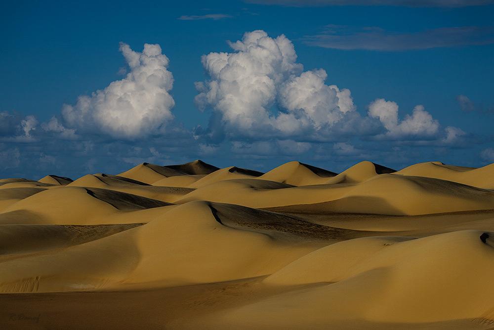 "фото ""Dunes 11"" метки: путешествия, пейзаж, desert, Африка"