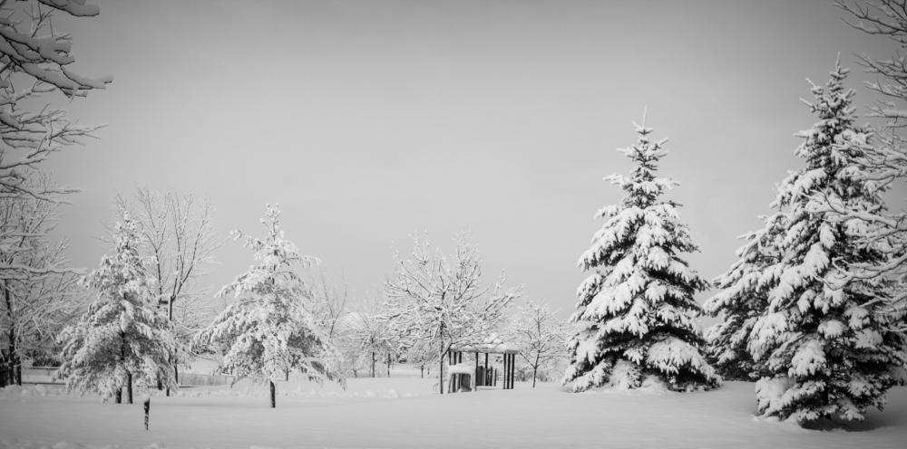 "photo ""Wonderland"" tags: landscape, black&white, nature, North America, winter"