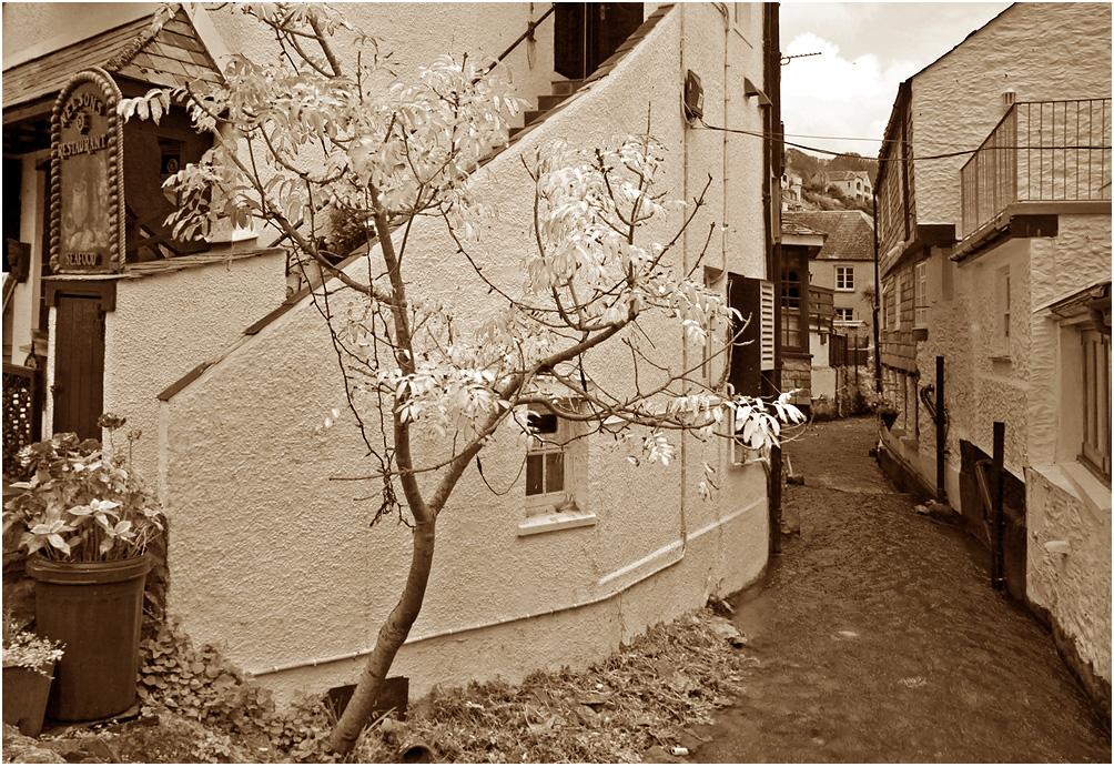 """фото """"Маленькая не Венеция, но все же..."""" метки: черно-белые, путешествия, архитектура, вода, дерево, осень"""