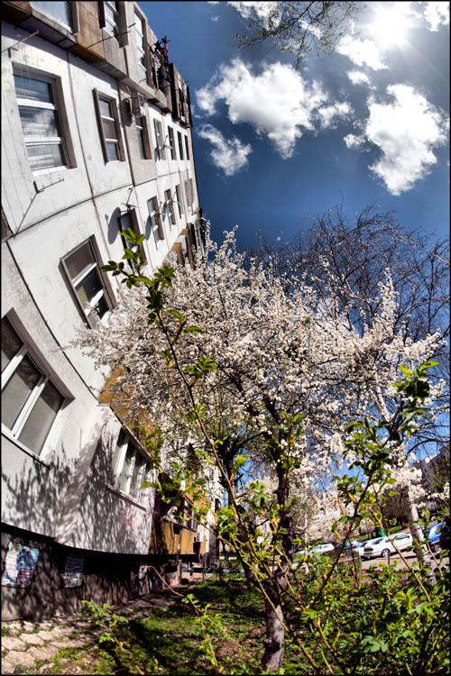 """photo """"весна"""" tags: landscape, genre, misc.,"""