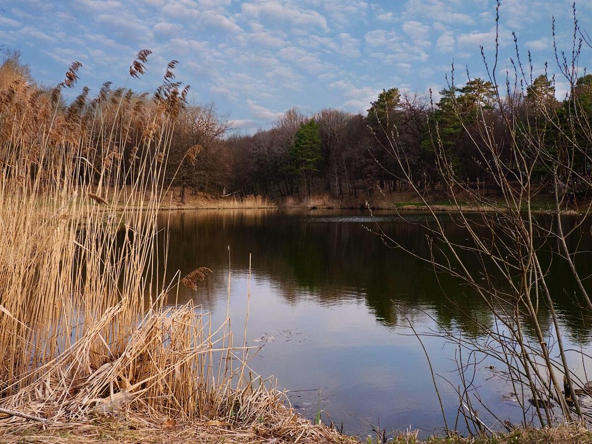 """фото """"Начало апреля..."""" метки: пейзаж,"""
