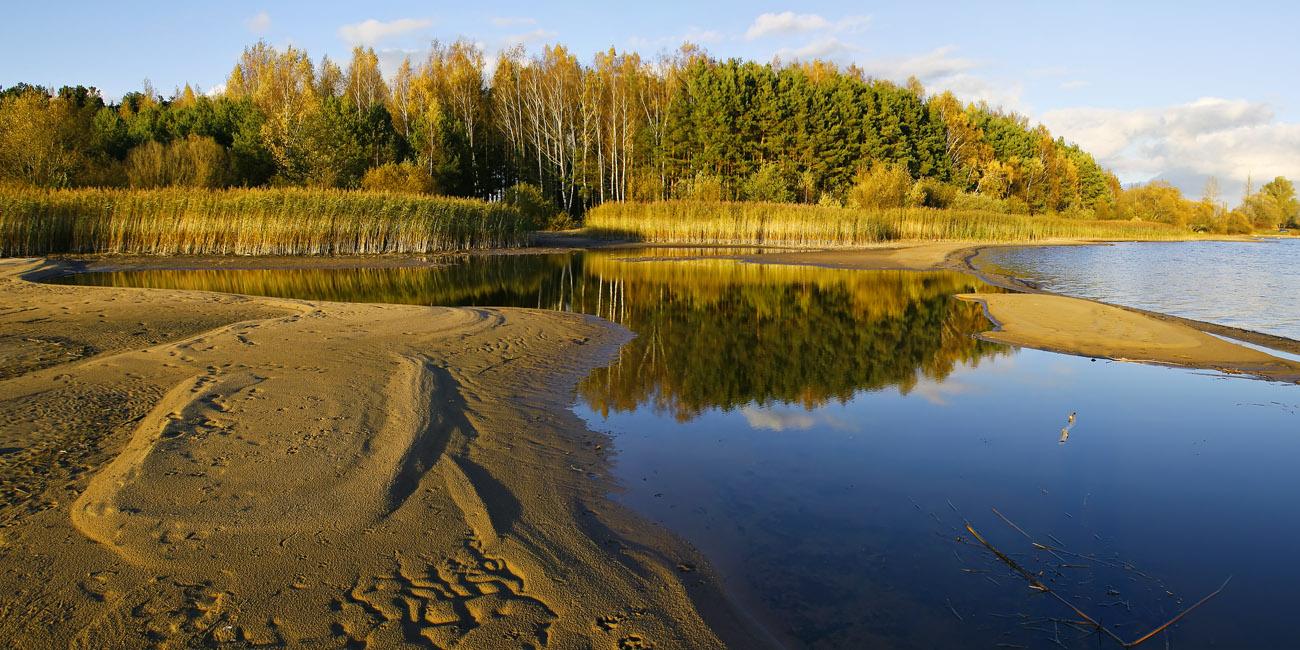 """фото """"Октябрь"""" метки: пейзаж, Беларусь, Вилейское водохранилище, осень"""