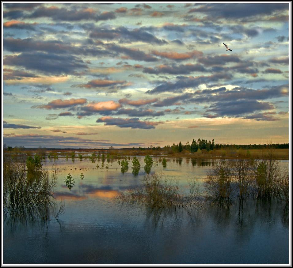 "photo ""***"" tags: landscape, Весна вечер"