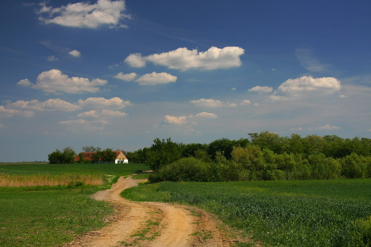 "photo ""Near Arača"" tags: landscape, nature, travel,"