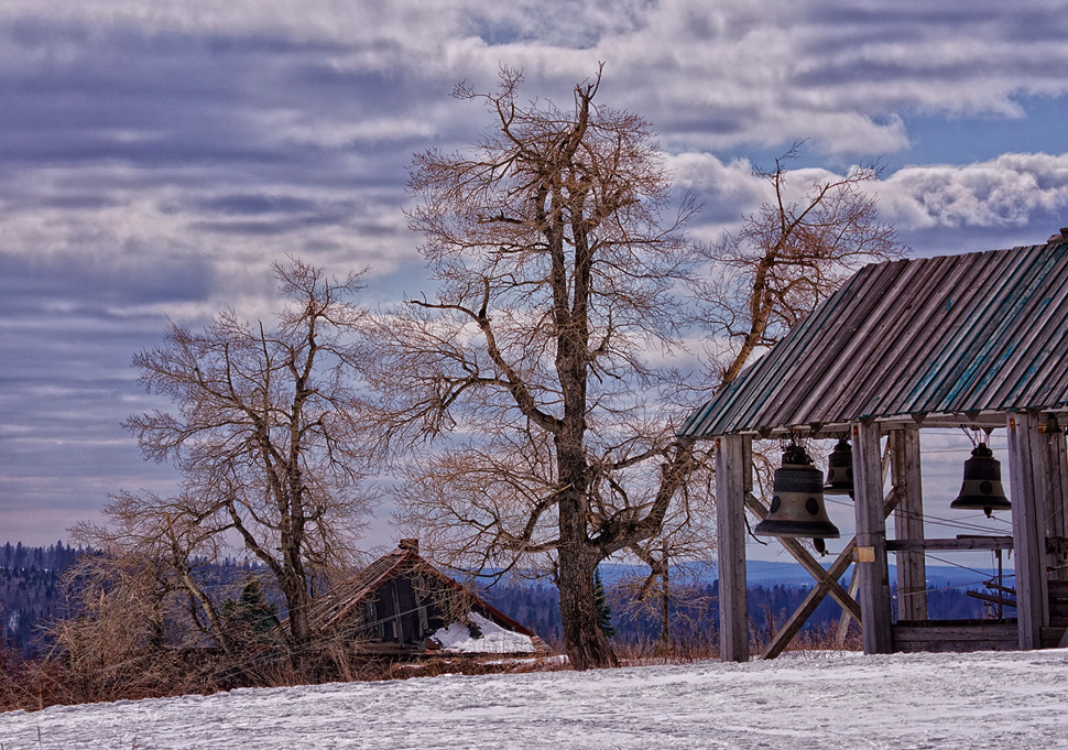 "photo ""Russian landscape. Bodhi tree."" tags: landscape, nature,"