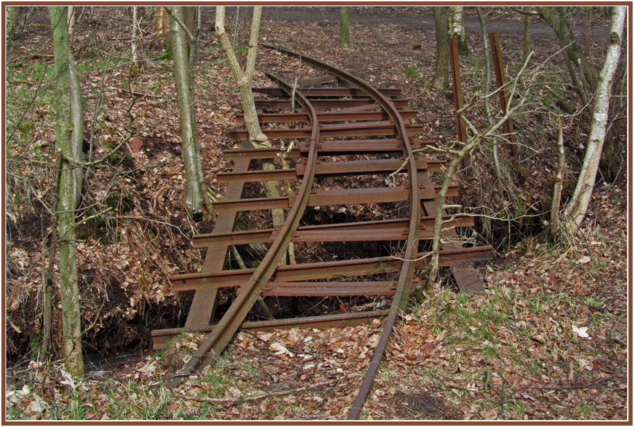 """фото """"FINIS MUNDI"""" метки: пейзаж, природа, натюрморт, bog, forest, moor, rail, wood"""