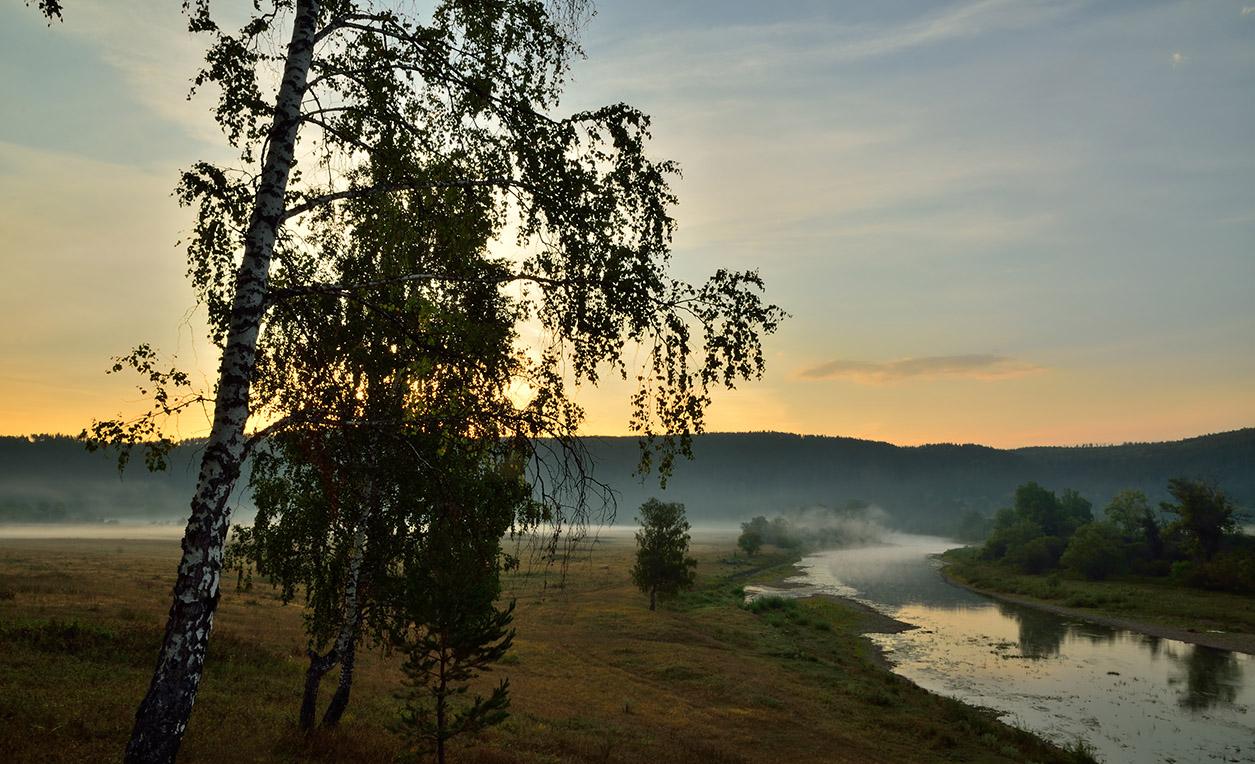 """фото """"***"""" метки: пейзаж, деревья, лето, река, туман, утро"""