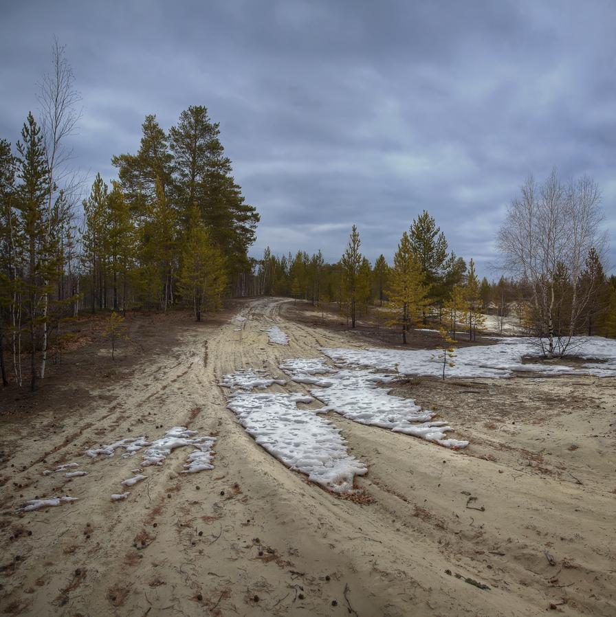 "фото ""Весна, ветер с севера"" метки: пейзаж, природа,"