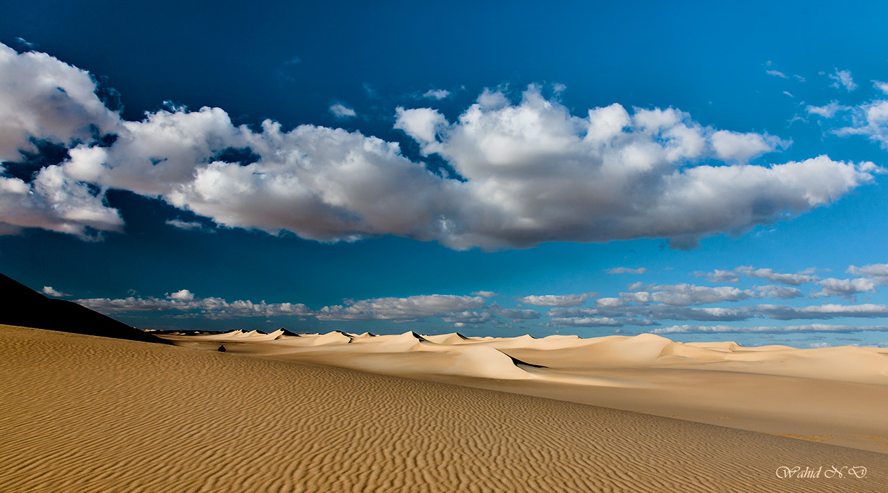 "photo ""Sand Dunes and textures"" tags: travel, reporting, landscape, Africa, desert"