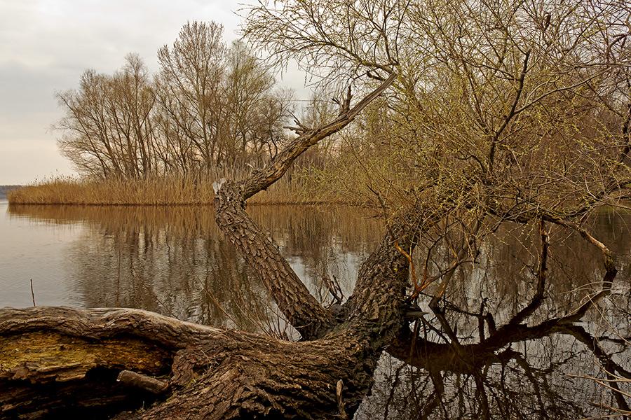"photo ""***"" tags: landscape, Ukraine, Запорожье"
