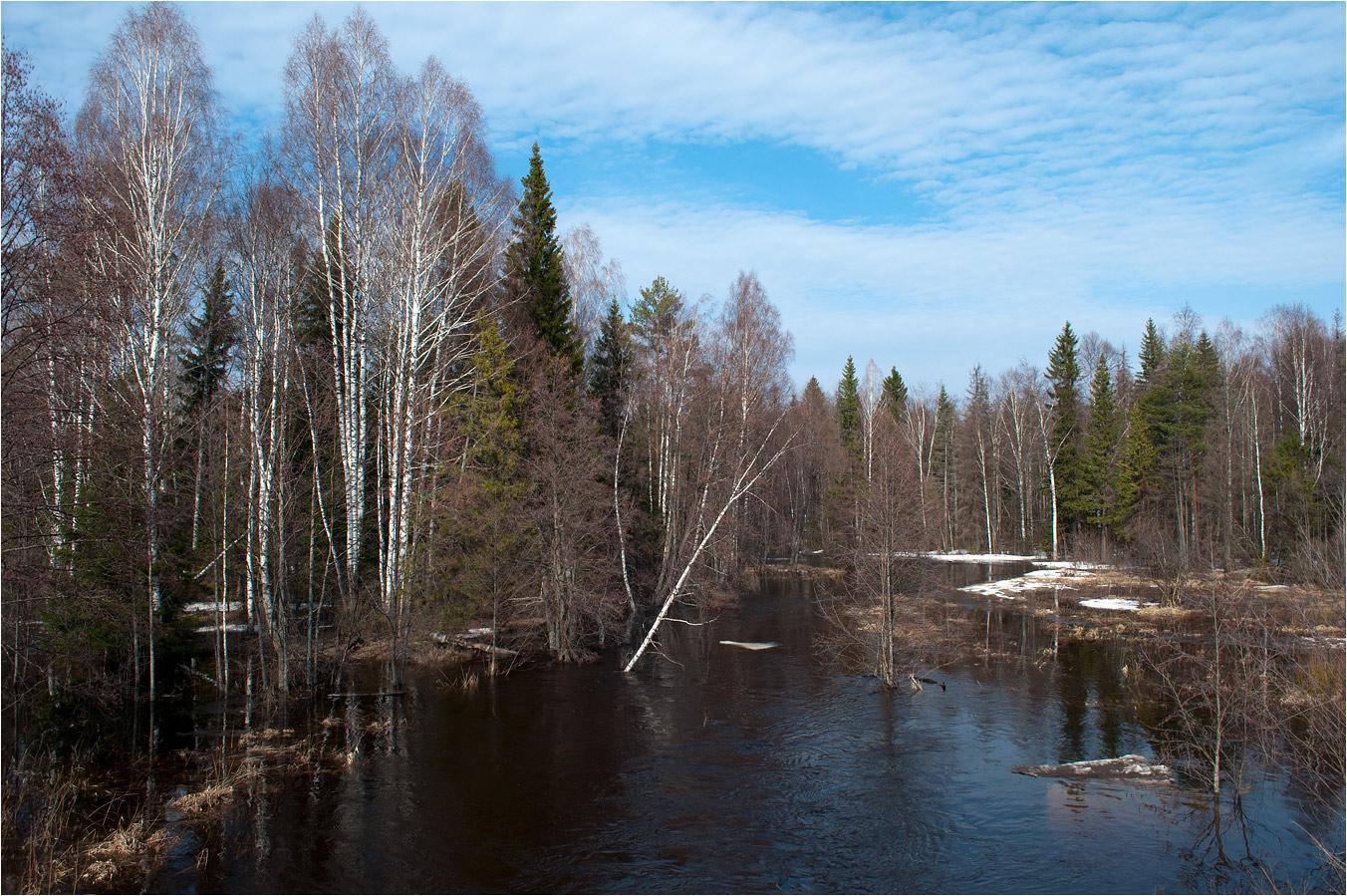 """фото """"Пробуждение"""" метки: пейзаж, березы, весна, вода, лес, облака, разлив, река"""