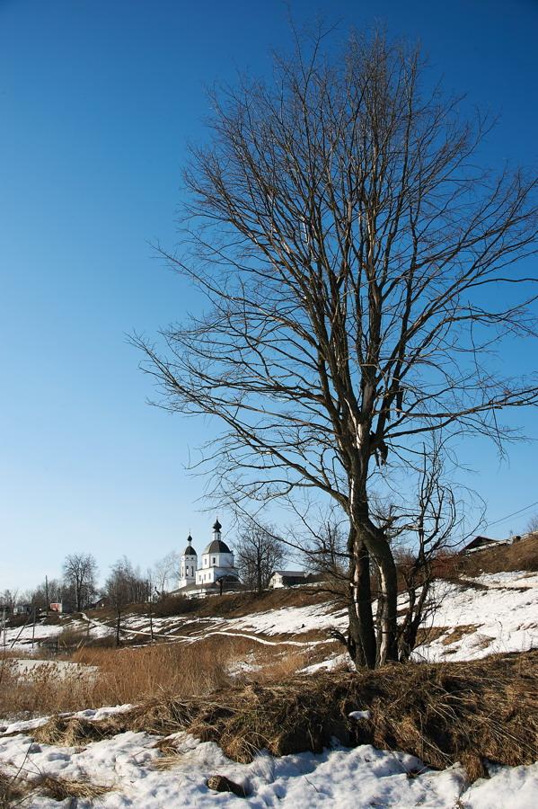"""фото """"Весну не встретив... (2013)"""" метки: пейзаж,"""