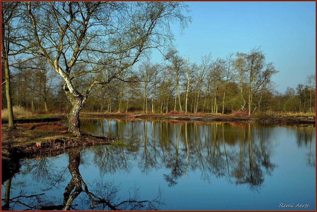 """фото """"***"""" метки: пейзаж, природа, spring, вода, облака"""